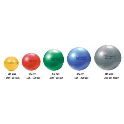 QMED Fizioball - Gimnasztikai labda 85cm